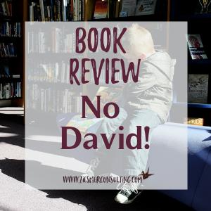 Book Review No David